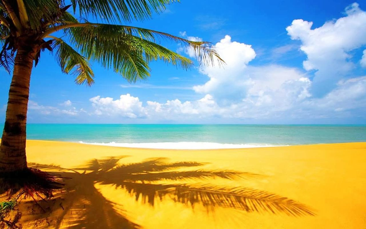 Beach Sea Sand Palm Tree Tropical Climate Cloud - Sky Sky Idyllic Scenics Tree Travel Destinations Landscape Vacations Water Tranquility Blue Sunny Nature Horizon Over Water Tranquil Scene The Great Outdoors - 2017 EyeEm Awards Live For The Story Relaxing Time Relaxation Hanging Around