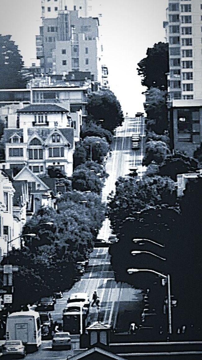 My Photography Tourist Attraction  The Architect - 2016 EyeEm Awards Black And White Architecture The Photojournalist - 2016 EyeEm Awards San Francisco Cityscape Architecture Photography Trees And Sky Street Photography Cars Steep Hill Buildings And Trees Buildings Architecture City Life City Street Street Lamps