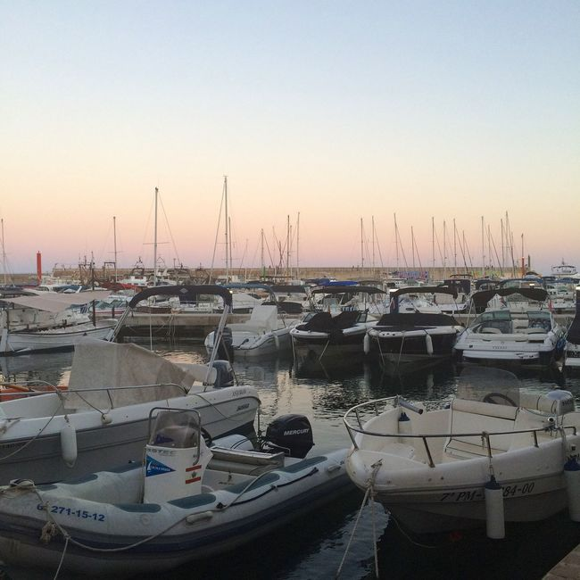 Mallorca Mediterranean  Sea And Sky Sea Sunset Harbour Boats
