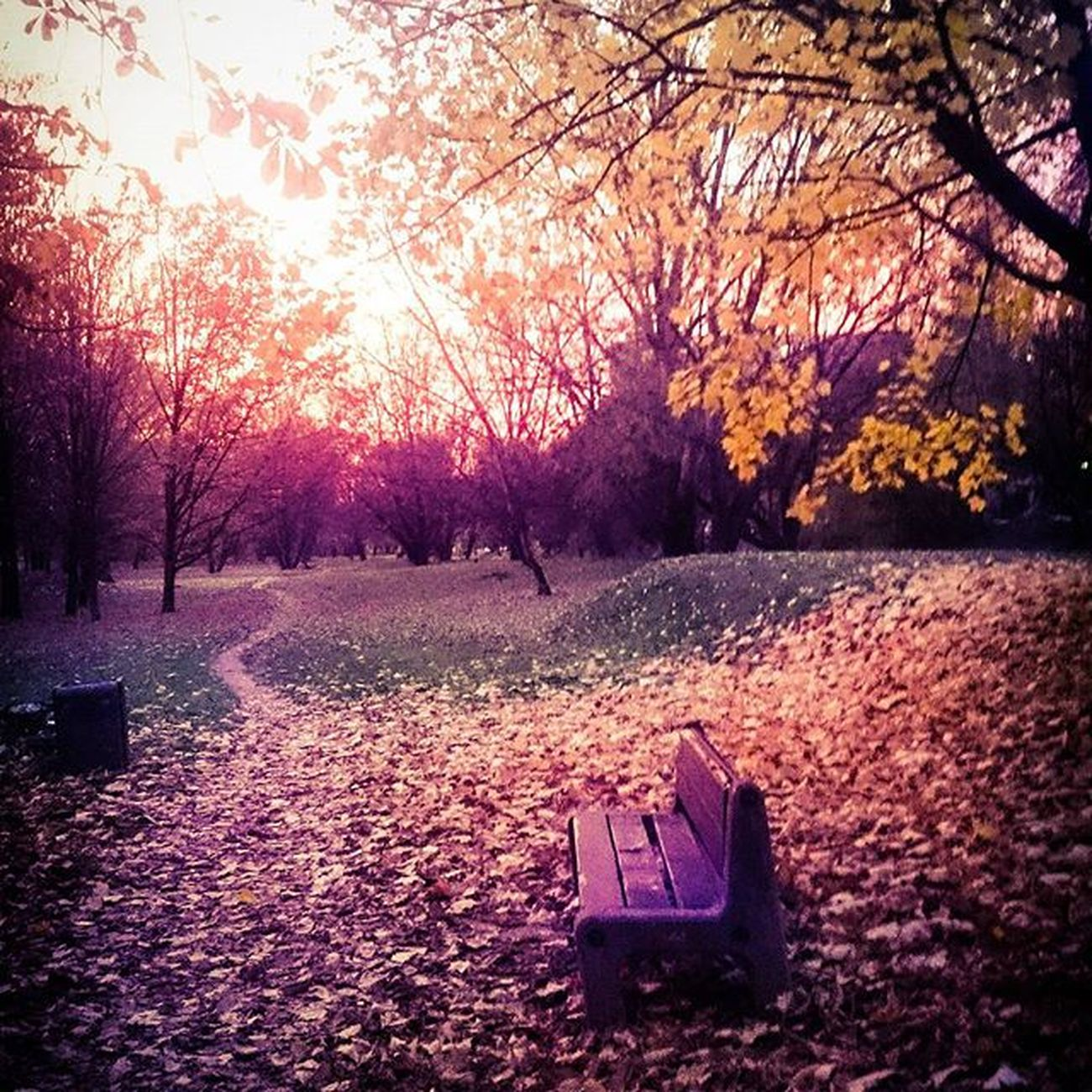 Dolinkasluzewiecka Sluzew Warszawa  Warsaw Mood Autumn Allsaints AllSaintsDay