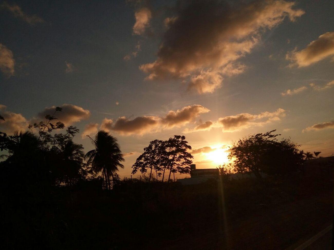 Sertão Nordestino. Brazil Sunset Sky Sertão Nordeste  Nofilter