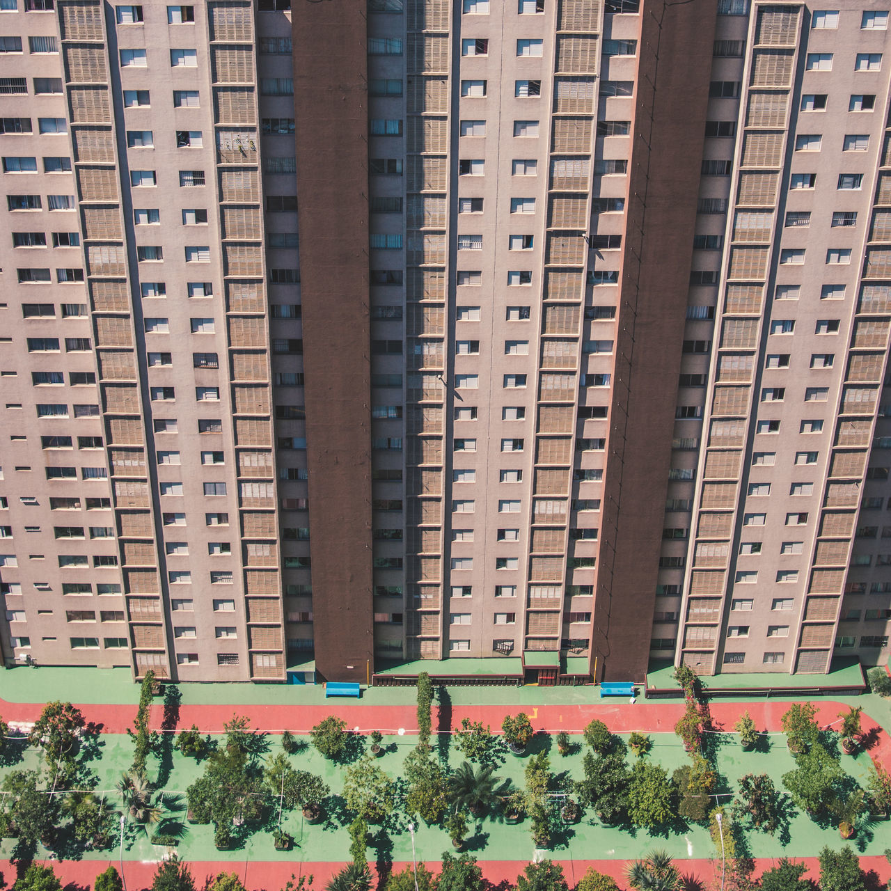 Picture taken from the top of Edificio Copan. Apartment Architecture Block Building Exterior Built Structure City Close-up Condo Day Flower Growth Minimalism Nature No People Outdoors Park Pattern Plant Repetition Simplicity Skyscraper Skyscrapers The Architect - 2017 EyeEm Awards Tree Windows