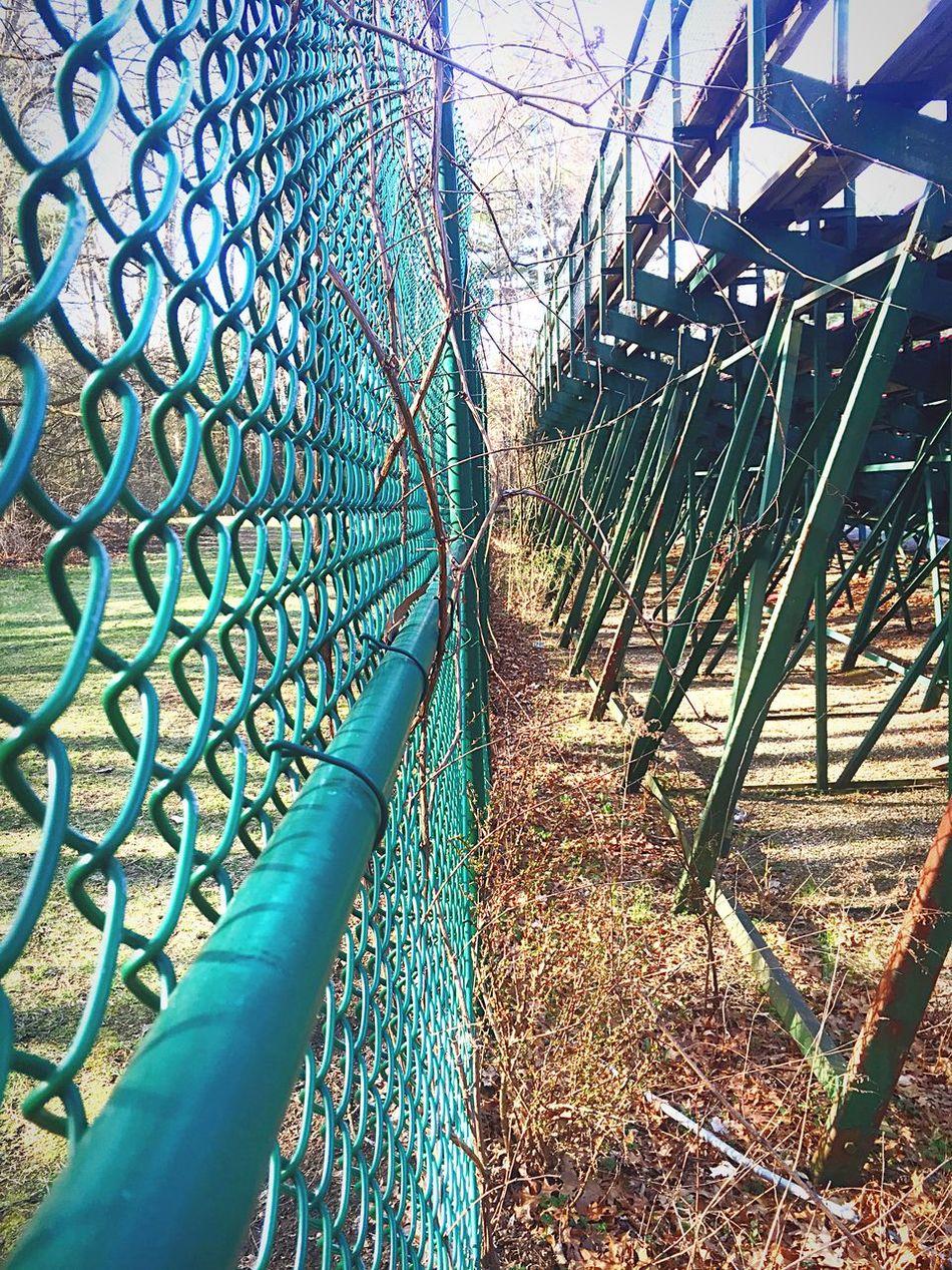 Uncared For Centralpark-Schenectady, NY Perfect ForDogLovers Mydogdidntmindtheslum