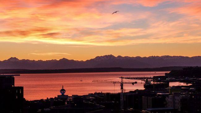 Sunset Olympic Mountains Elliott Bay