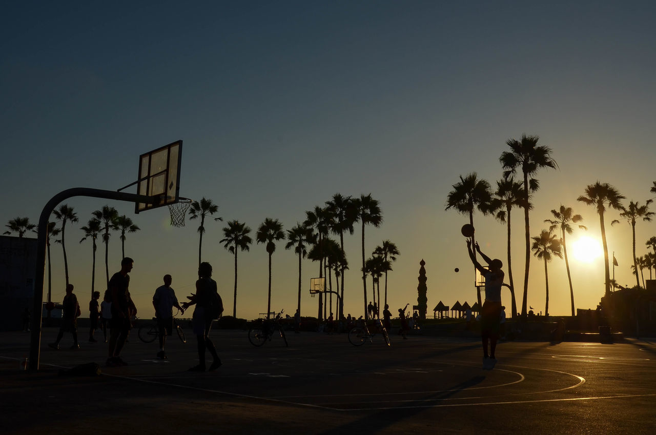 Bazaar Brawl Asphalt Basketball - Sport Basketball Hoop Basketball Player California Dreaming City Competition Competitions Competitive Sport Court Leisure Activity Lifestyles Los Angeles, California Men Palm Tree Playing Reflection Silhouette Sport Sports Team Sportsman Street Fighter Sunset Tree Venice Beach