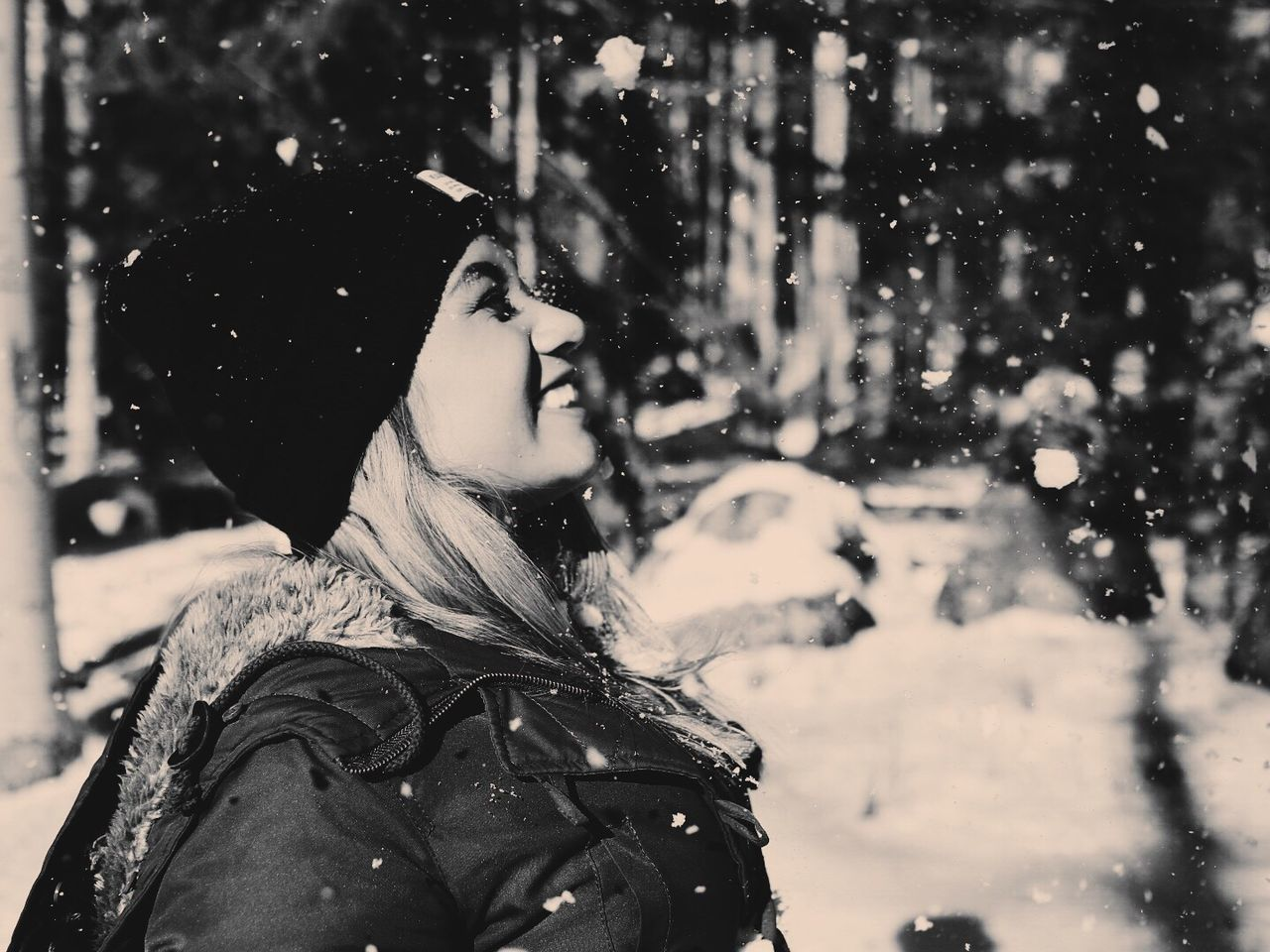 Snow Winter Season  Cold Temperature Nature