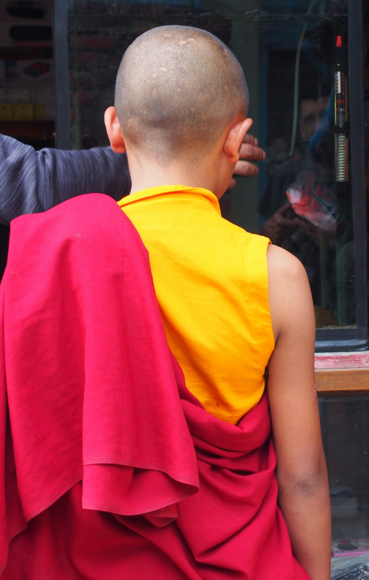Multi Colored Outdoors Lifestyles Real People Monk  Kid Respect Buddhism Buddhist Culture