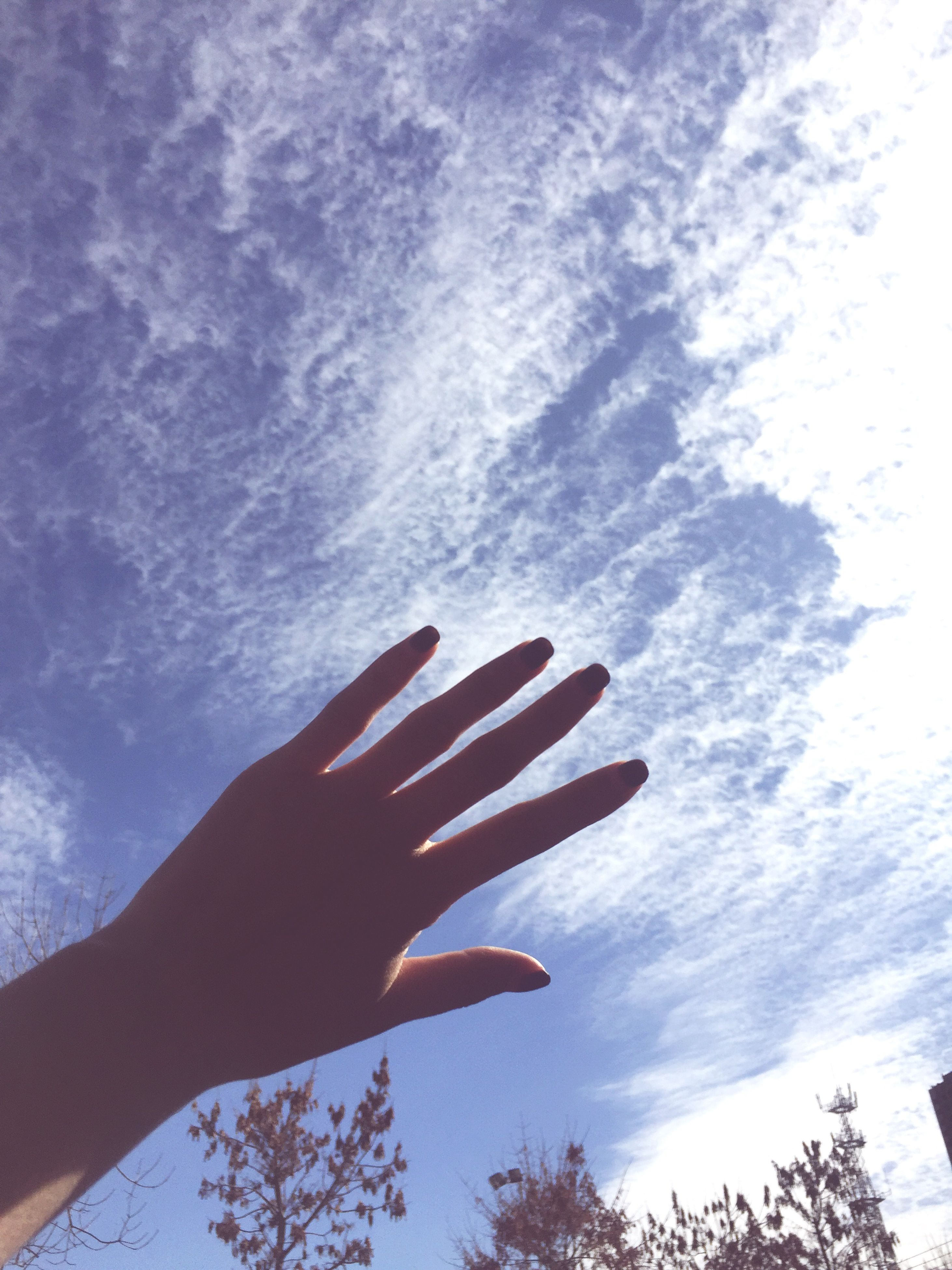 person, part of, low angle view, sky, cropped, human finger, unrecognizable person, cloud - sky, tree, personal perspective, holding, day, cloud, outdoors, leisure activity, nature, lifestyles