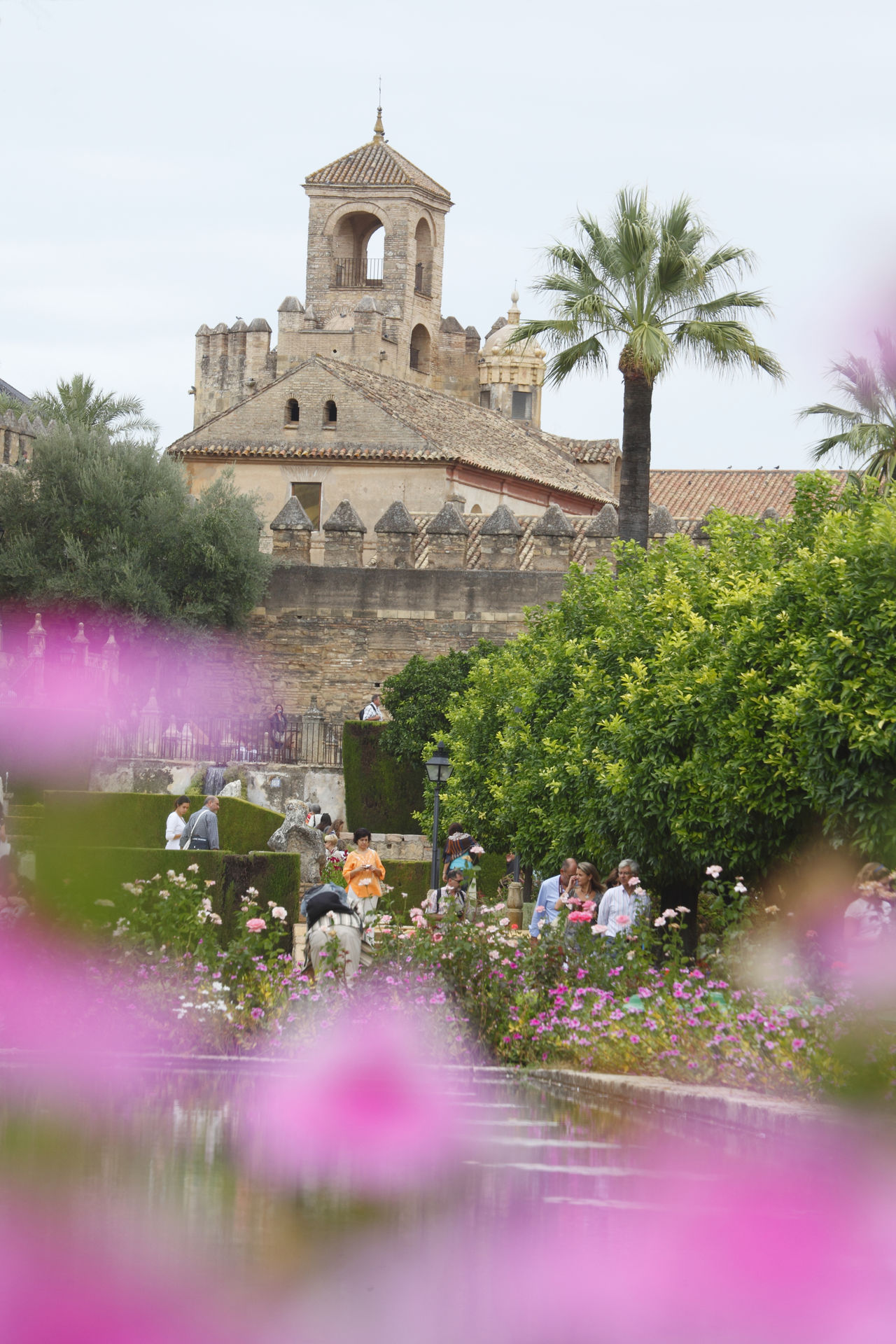 Garten of Alcazar, Cordoba, Andalusien, Spanien Alcazar Andalucía Andalusia Architecture Building Exterior Built Structure City Córdoba Day De Flowers Growth History Nature No People Outdoors Sky SPAIN Travel Destinations Tree Water