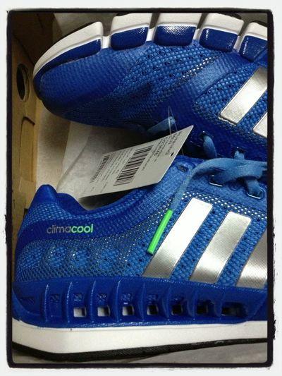 Enjoying Life Adidas My Adidas Climacool