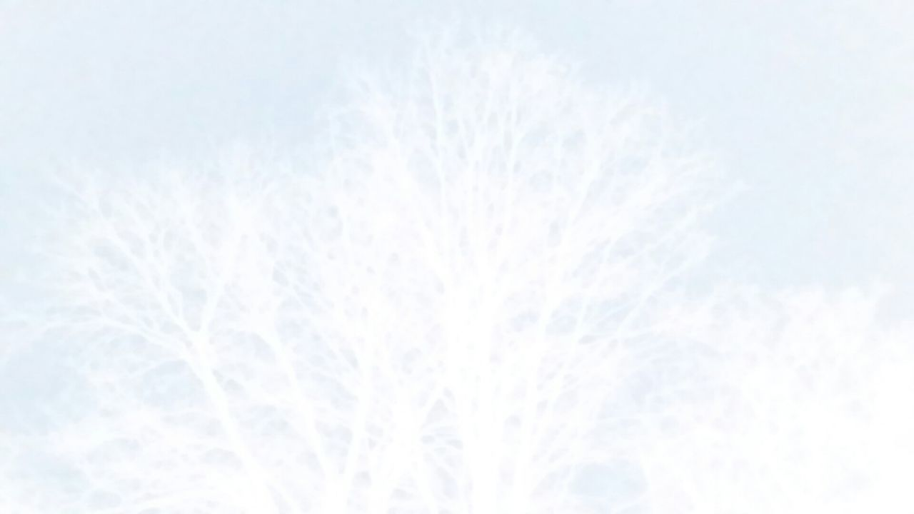 backgrounds, white color, nature, no people, winter, defocused, blue, beauty in nature, sky, illuminated, snow, outdoors, day, close-up, freshness