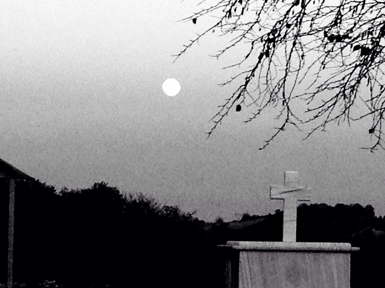Graveyard Beauty Blackandwhite Black And White Blackandwhite Photography Black&white Moon Moonlight Mood Moon Shots Cross Moon Eclipse Greece Trees Sadness Fear Metal Gothic Darkness And Light Dark Dark Art