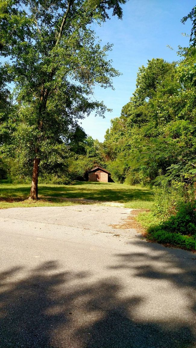 Distant Distance Road Grass Grassy Grassfield Distant View Building Building Exterior Old Building  Historical Building Historic Building Historical Place Historical Buiding Old Jail Historical Site Historic Site Check This Out Lonely Building Trees Trees And Sky Sunlight And Shade Small Building Small Structure Little Building