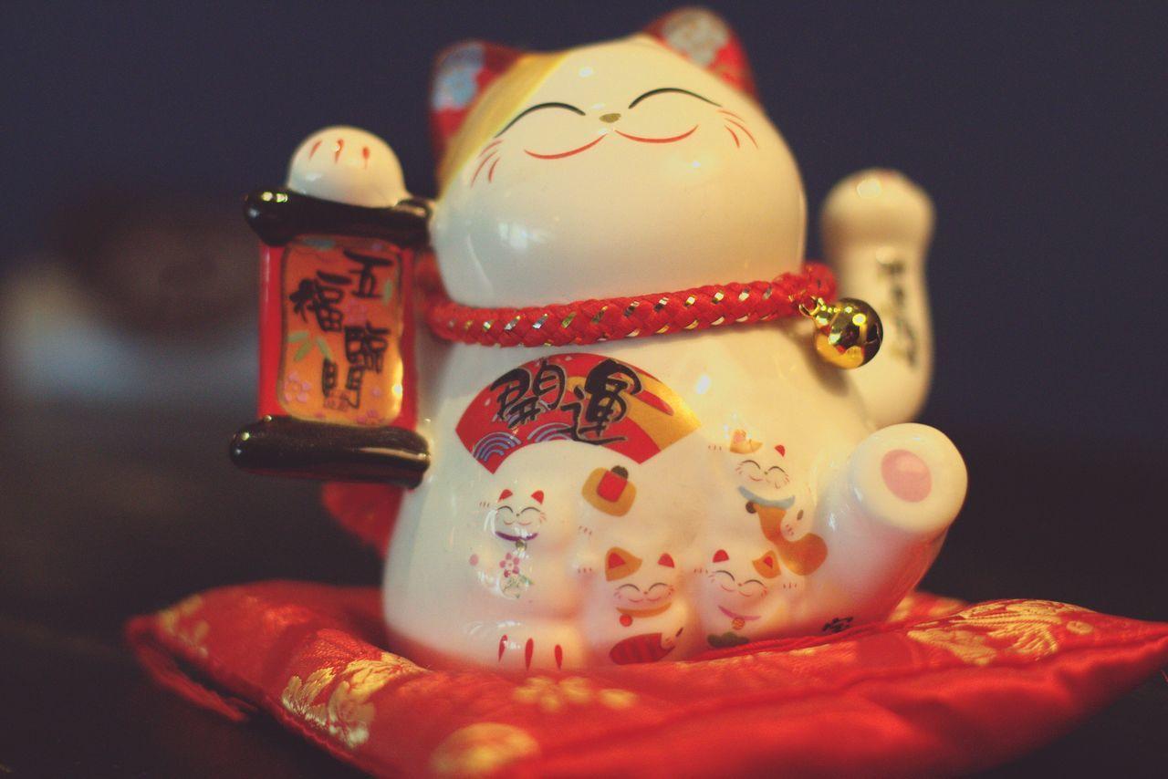 いらっしゃいませ♪(o・ω・)ノ)) 猫 いらっしゃいませ~ かわいい Cute Cat Welcome Japan