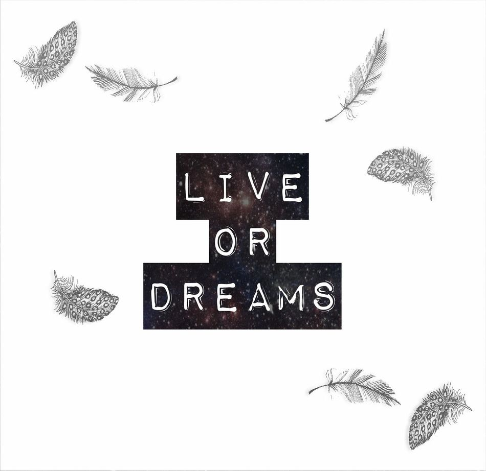 Blackandwhite Photoshop Edit Space Universal Live Dream Tipography Motivation Love Cute Black And White Dreaming Bird