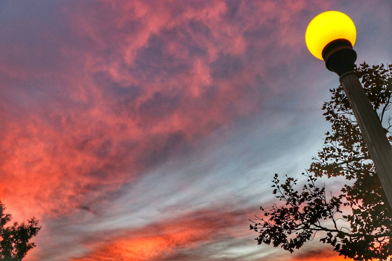 Just Another Beautiful Sky Sunsets Sky Outdoors Tree ForTheLoveOfPhotography Beauty In Nature Tranquility Colorful From My Point Of View Skyscapes Sunset Cloudscapes Dramatic Sky Treetops Idyllic Scenics Tranquil Silhouettes Nature Photography Tree Photography Photo Of The Day Bestoftheday Cloud - Sky Sunrise_sunsets_aroundworld