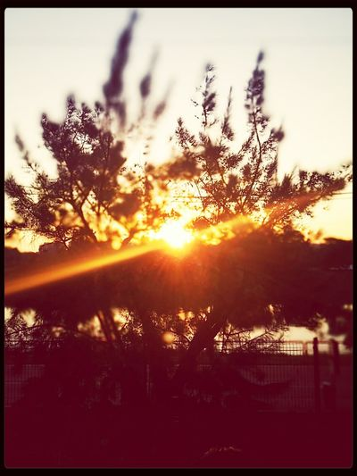 Hello Sunset/ Warm Nature Simple Things In Life