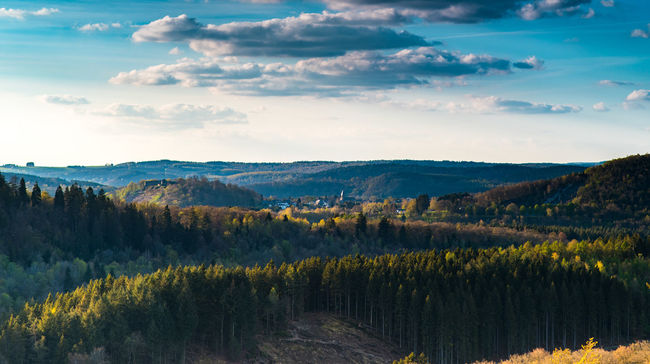 Ardennes Ardennesbelges Blue Sky Castle Forest Forest Photography Landscape Proud Sky