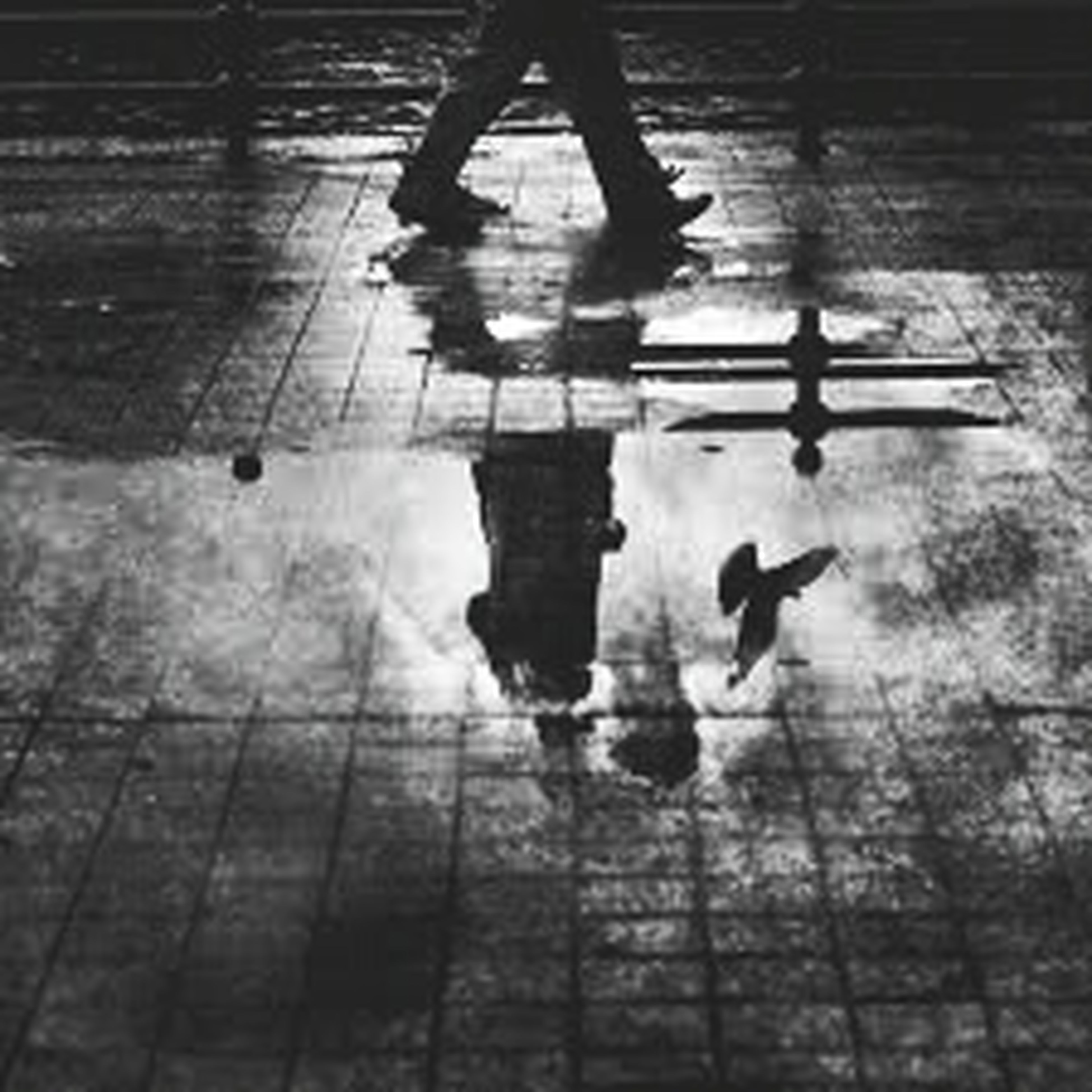 lifestyles, men, leisure activity, walking, reflection, low section, person, high angle view, shadow, silhouette, puddle, togetherness, water, standing, street