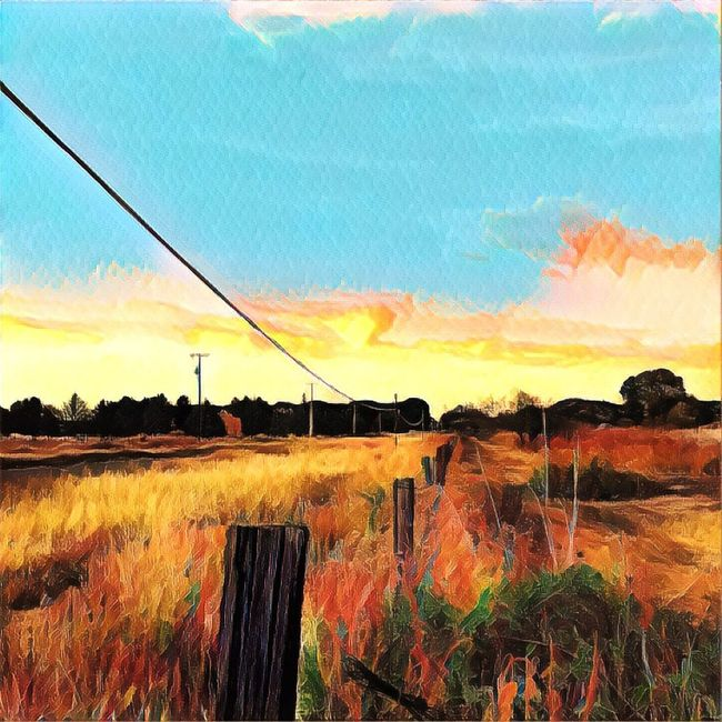Landscape Tranquil Scene Scenics Tranquility Barbed Wire Grass Sky Solitude Remote Cloud Fence Plant Beauty In Nature Wooden Post Idyllic Pole Calm Cable Shootermag_usa IPhone7Plus Malephotographerofthemonth Streamzoofamily Shootermagazine Rural Scene Fences