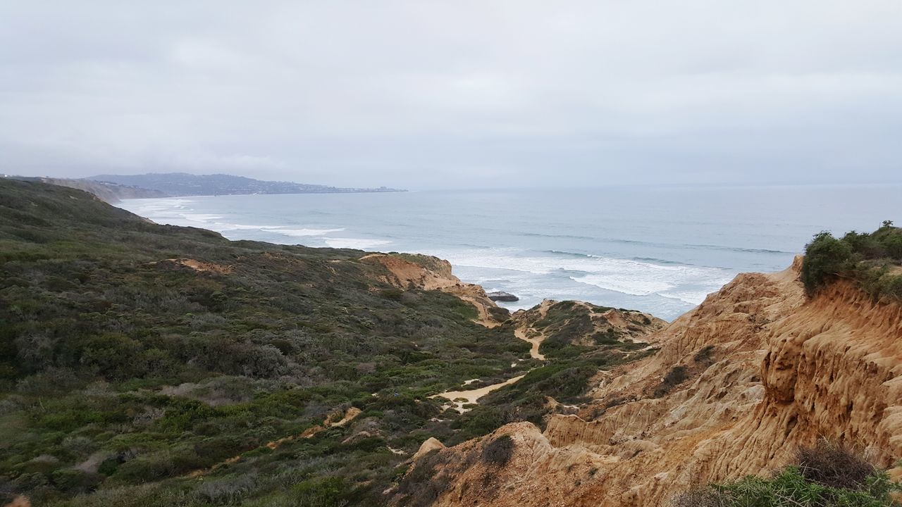 Torrey Pines State National Reserve