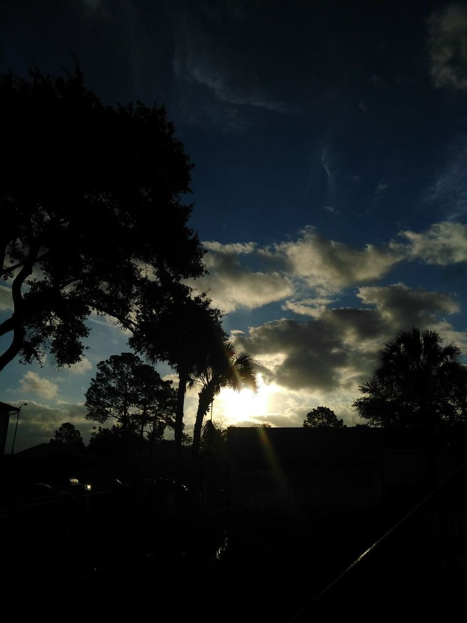 Unedited Texas beauty! Silhouette Nature Sky Tree Beauty In Nature Sunset No People Cloud - Sky Outdoors Night Star - Space Astronomy EyeEm Best Shots Eyeemcollection Texas Photooftheday Myview Beautiful Funinthesun