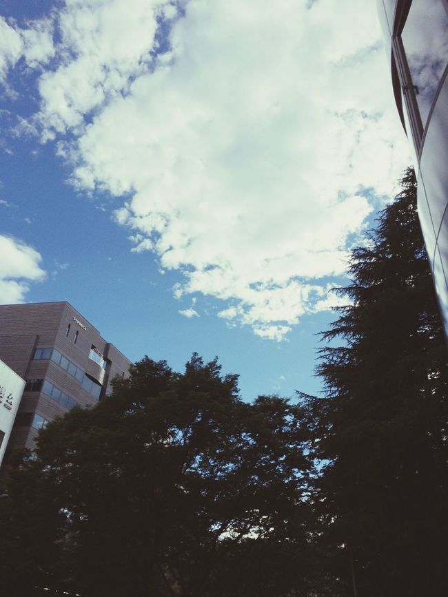 Aftertherain