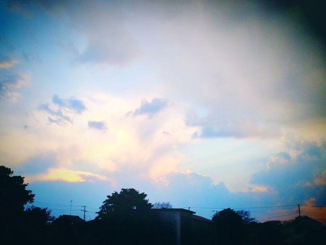 夕日 空 Sunset Sky Beautiful Freeday