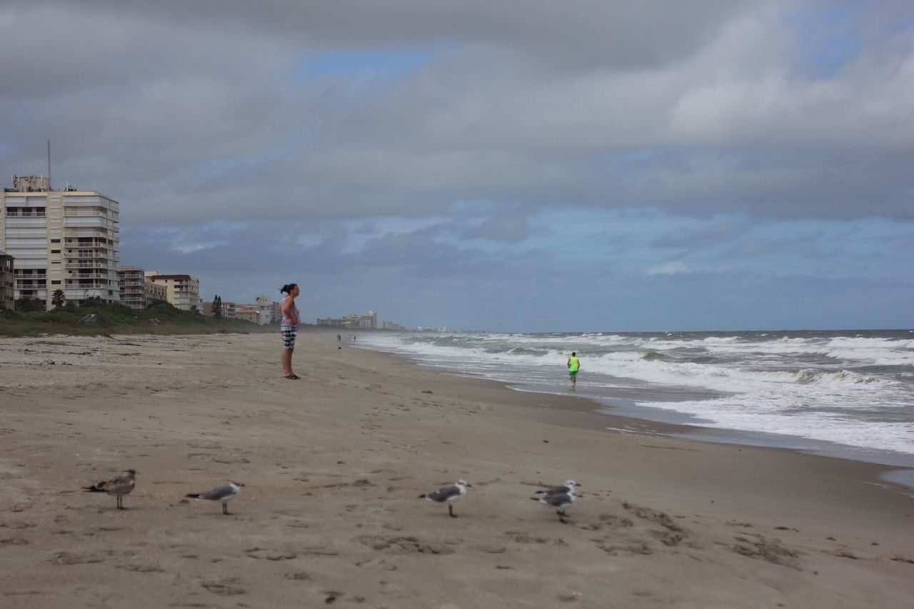 Into the wind Beach Windy Day Shore Melbourne Beach, FL Beach Birds Shore Birds Horizon Over Water Cloud - Sky Coastline Sand Oceanside Oceanscape