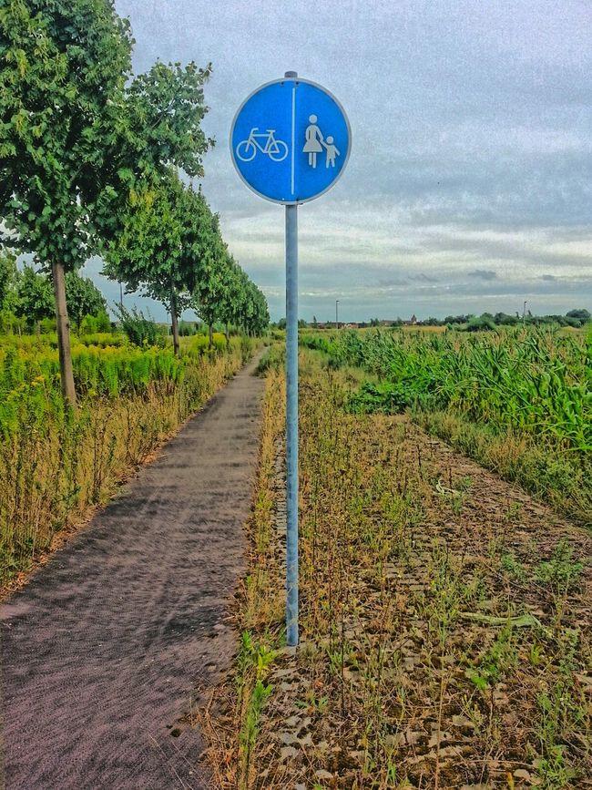 Fußgänger immer schön rechts auf den Sturzacker gehen, Fahrradfahrer bitte auf der glatten Fläche fahren! Leipzig