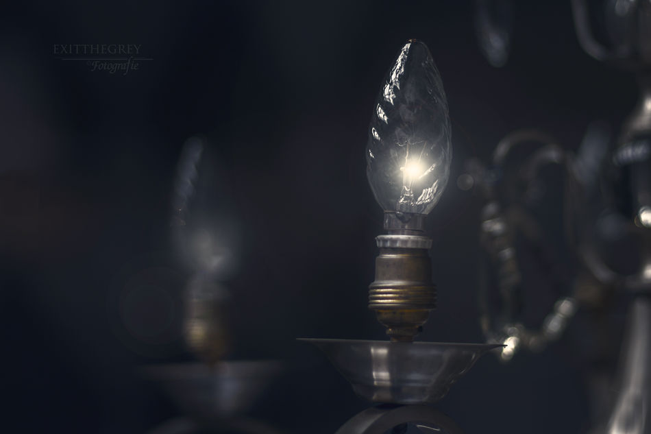 Atmospheric Atmospheric Mood Avocado Canlelight Close-up Dark Dog Electric Lamp Electric Light Focus On Foreground Glowing Home Sweet Home Illuminated Kaarst Licht Und Schatten Lichtspel Light Lighting Equipment Lightplay Lit Night No People Old Selective Focus Silence