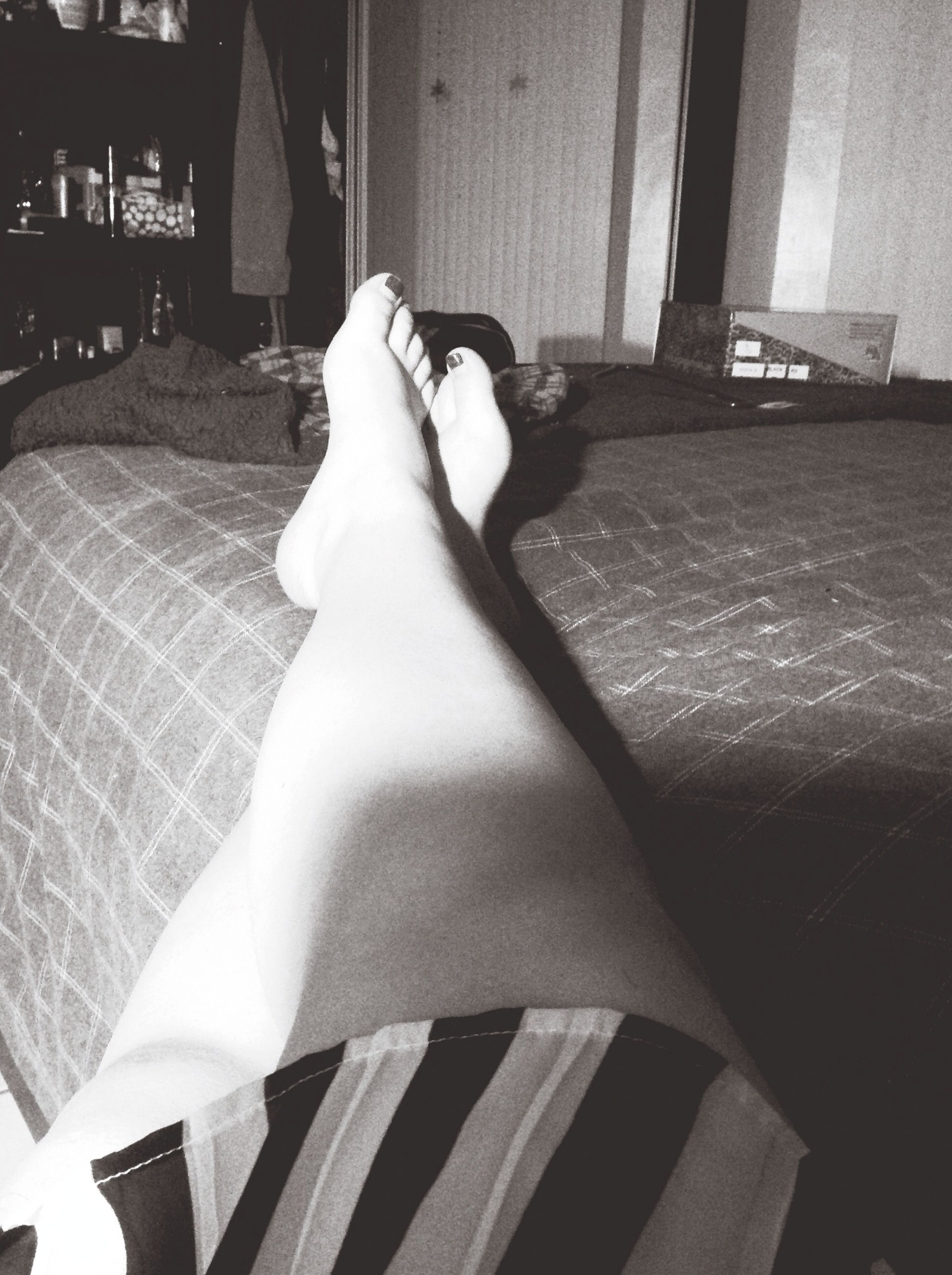relaxation, low section, indoors, person, personal perspective, sunlight, resting, part of, home interior, cropped, lying down, one animal, high angle view, day, bed, shadow