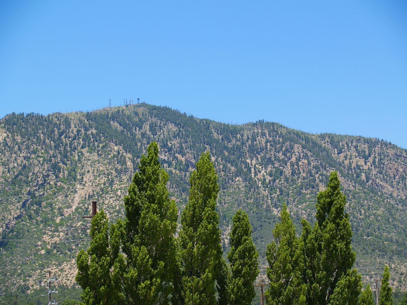 Blue and green collide ever so subtly. Green Bluesky Mountain Peaks Creation Nature Forrest Arizona