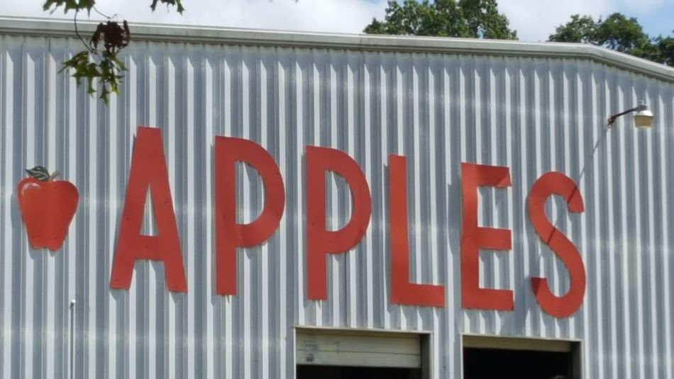 Fresh Apples Red Communication No People Apples Apple Season Come Get Some Fresh