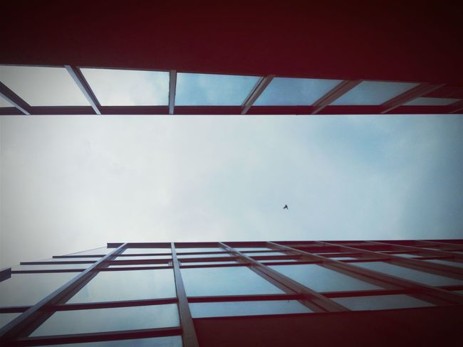 Worm's Eye View Look Up Perspective Nuvali Ayala Glass House Curtain Wall Architecture