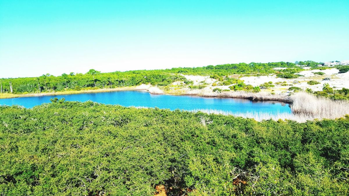 Inlet Waters Above The Trees Water Nature Beauty In Nature Peaceful Dunes Santarosabeach