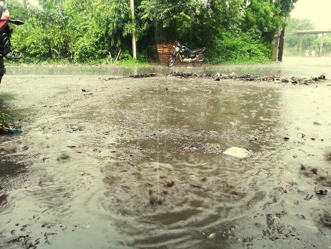 Rainfalll....