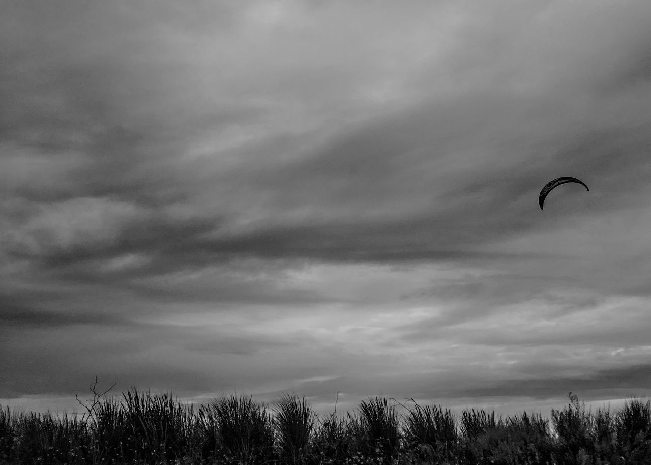 Adventure Cloud - Sky Day Extreme Sports Kite Kitesurfing Leisure Activity Lifestyles Low Angle View Nature One Man Only One Person Outdoors People Real People Sky Unrecognizable Person Waterfront Grass Dune
