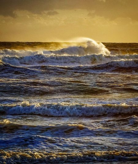 Sea Water Wave Surf Nature Beach Life