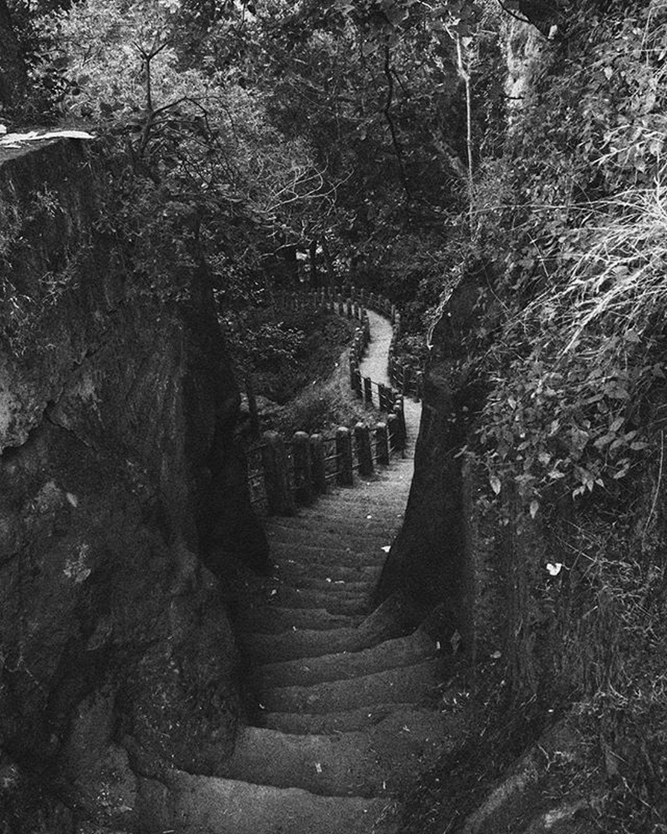 2014 Throwback Mainpat Bnw Monochrome Grayscale Bnwlovers Bnw_society Bnw_captures Stairs India Noir Bnw_life Bnw_demand Canonphotography Canon_photos 1200D Wide Blackandwhite NoEdits  Photographyislife Instadaily Photographybros