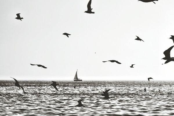 Photo by özgürsarıoğlu
