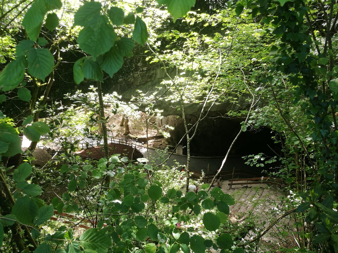 Zuegarramurdi Cave Cueva Nature Green Color Zugarramurdi
