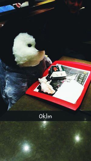 Pinguin Pinguintime MacDonald Macdo  Frankfurt Mdr