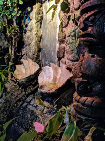 one of the tikis in the restaurant Backgrounds Indoor Photography Taking Photos Green Leaves Polynesianrestaurant Giant Clam Shell Fountain Restaurant Decor Waterfall Tiki Tiki Bar Indoors  Sand Island Eyeem Plants Flowers,Plants & Garden Close-up
