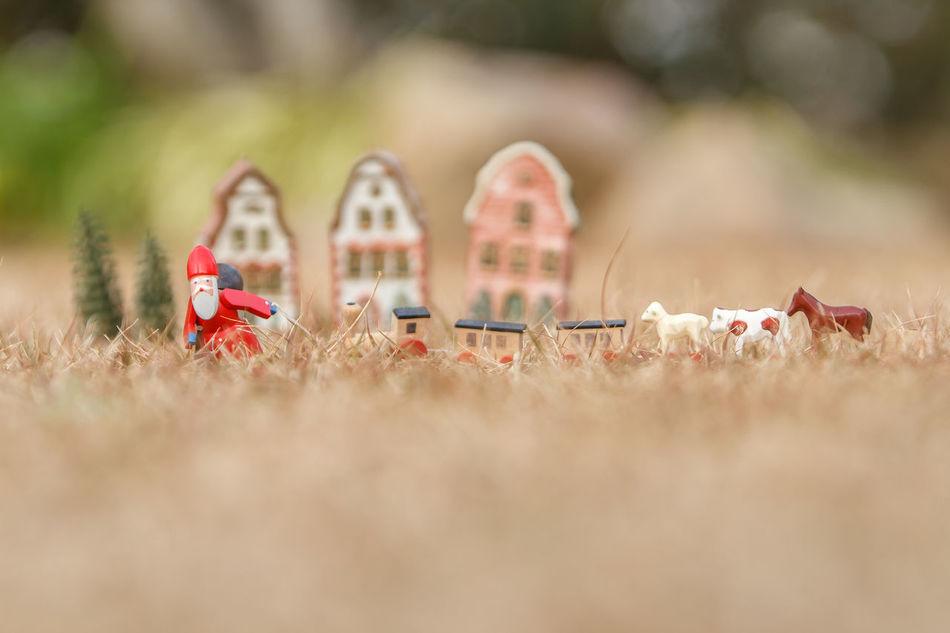 Beautiful stock photos of weihnachtsmann, no people, day, outdoors, close-up