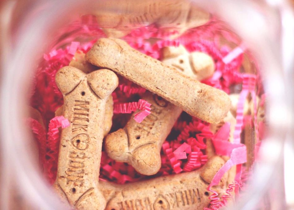 Dog treats Pink Color Close-up No People Flower Freshness Fragility Indoors  Flower Head Day Food Photography Dog Treats Sweet Cookies Dog Food Pink Travel Destinations Valentine's Day  EyeEm Best Shots EyeEm Gallery Foodphotography Dessert Temptation Food And Drink