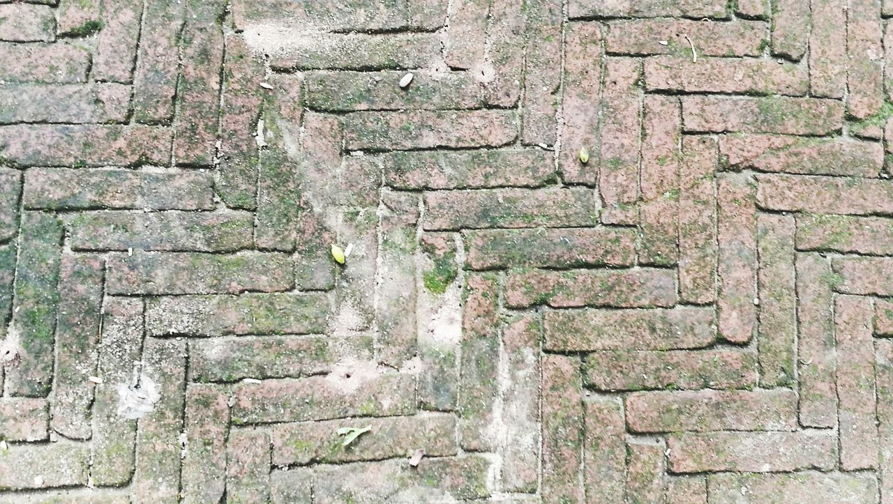 Backgrounds Full Frame Textured  Weathered Pattern Outdoors Day No People Close-up Built Structure Architecture Moss
