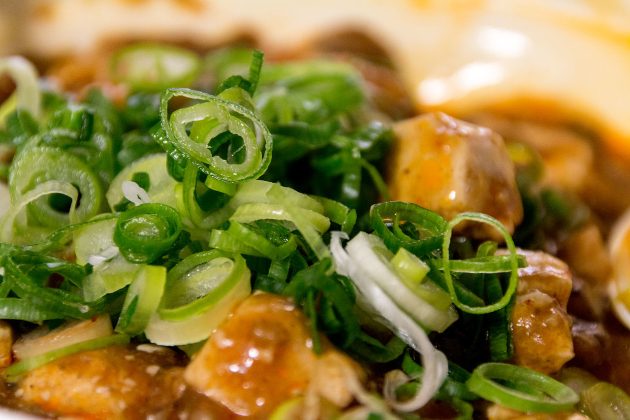A Taste Of Life Brown Chili  Chinese Food Close-up Cut Food Food And Drink Freshness Freshness Green Color Green Onion Hot Long Onion Macro Mapo Doufu Mapo Tofu My World Of Food Pepper Spicy Szechuan Pepper The Foodie - 2015 EyeEm Awards Tofu Vegetable Yummy
