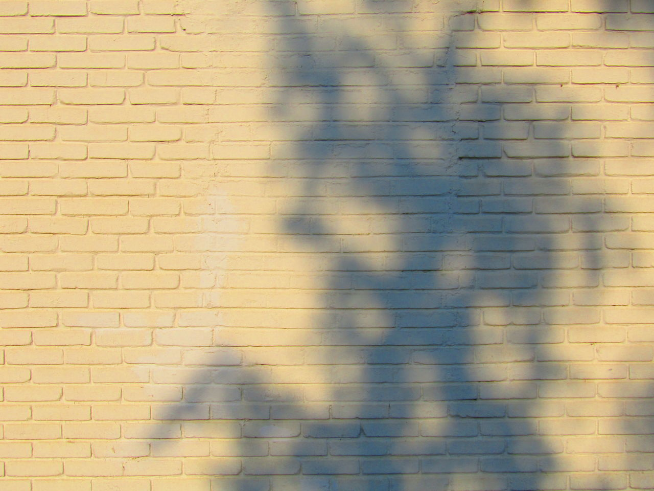 Ziegel Brick Wall Brick Wall Wand Shadow Full Frame Abstract Pattern Backgrounds Textured