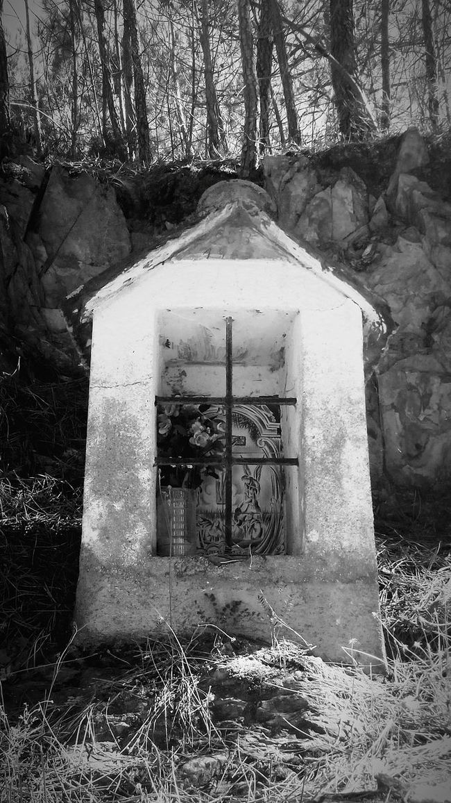 Nature Architecture Portugal Beauty In Nature Pray Angel Flower B Death And Life Black And White Photography Blackandwhitephotography Black&white